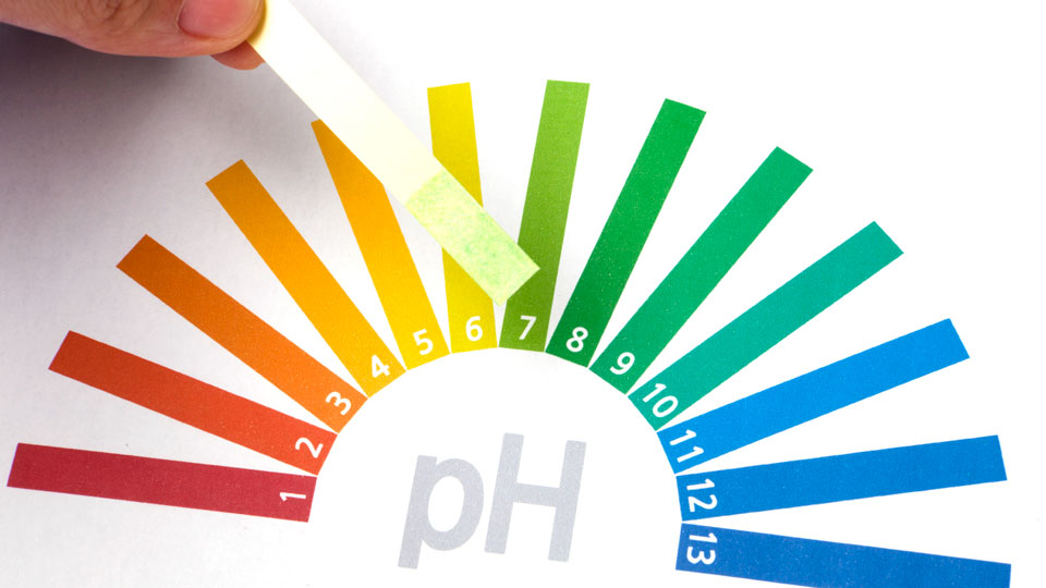 pH indicator scale with a range of colors