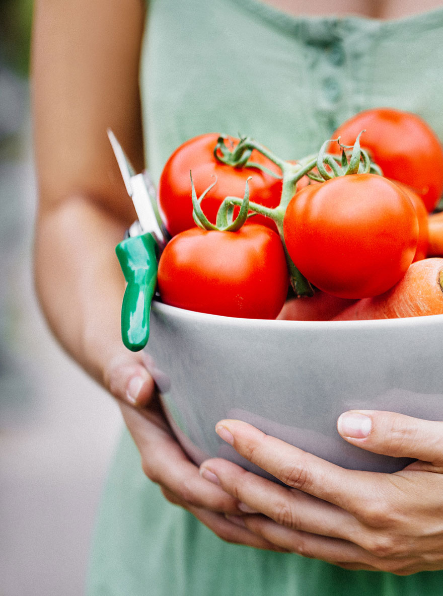 Frau trägt Schüssel mit frisch geernteten Tomaten