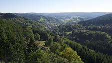 Gerolsteiner setzt klare Zeichen in seiner Klimastrategie: Ab Mai durchgehend klimaneutral