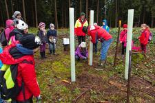 Engagement mit Zukunft: Gerolsteiner pflanzt Bäume in der Region