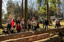 """Im """"Gerolsteiner Zukunftswald"""" Nachhaltigkeit erleben"""